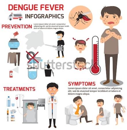 Brasile, i morti per febbre dengue salgono del 163% in sei